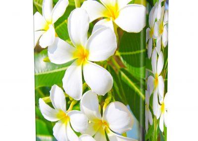 FRANGIPANI-FLOWERS-ASHES-URN-(LID-VIEW)