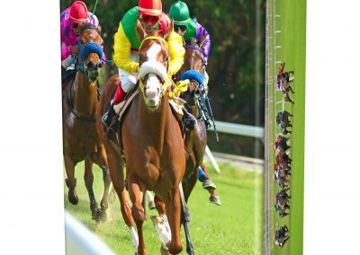HORSE-RACING-ASHES-URN-(LID-VIEW)