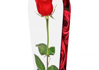 RED-ROSES-(LID-VIEW)