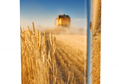 WHEAT-HARVEST-ASHES-URN-(LID-VIEW)