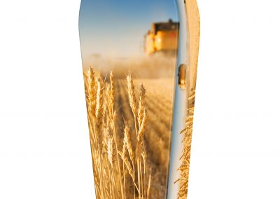 WHEAT-HARVEST-(LID-VIEW)