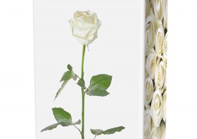 WHITE-ROSES-ASHES-URN-(LID-VIEW)