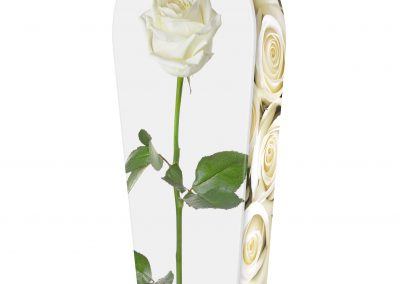 WHITE-ROSES-(LID-VIEW)