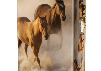WILD-HORSES-ASHES-URN-(LID-VIEW)